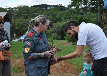 O passeio da cobra chamou a atenção de crianças e adultos